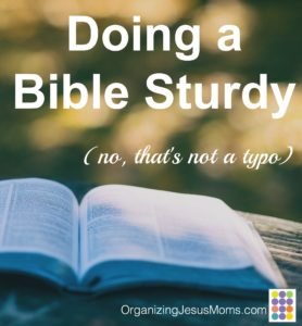 bible-sturdy-pin